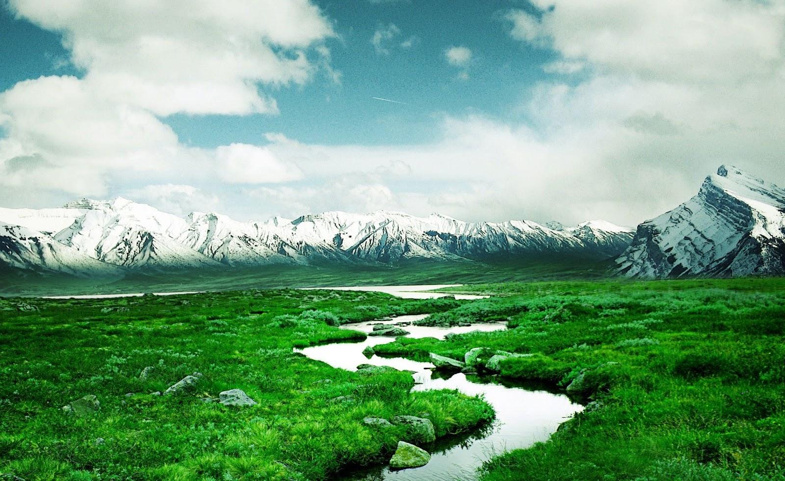 Beautiful Nature Hd Wallpaper Wallpapers