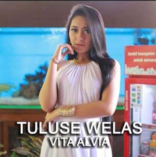 Lagu Vita Alvia - Tuluse Welas Mp3