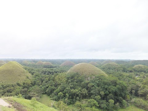 Chocolate Hills in Carmen Bohol, Philippines - Vacation Trip