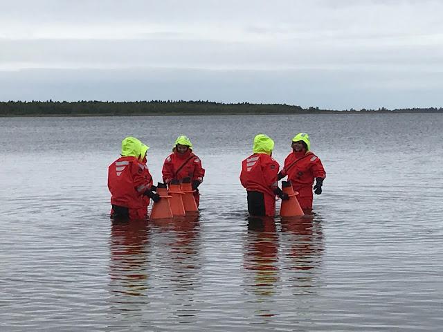 Nuoria pelastautumispuvuissa kokeilemassa vesikiikarien käyttöä meressä.