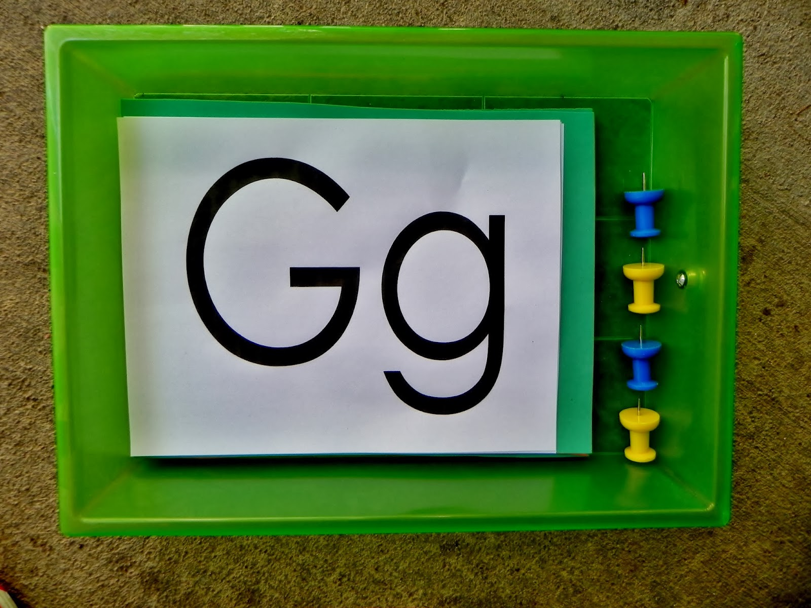 The Fantastic Five Animal Abcs Letter G