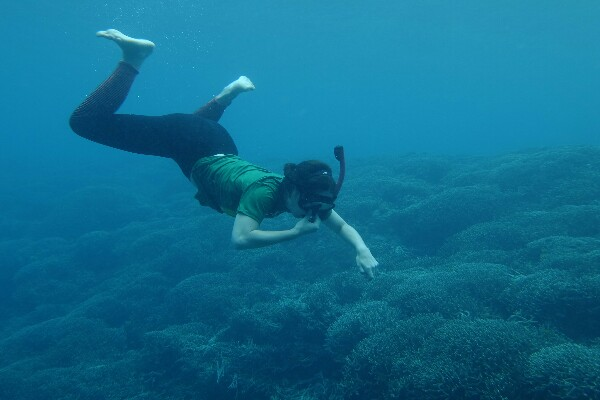 New Zealander girl was freediving in Mansinam island of West Papua