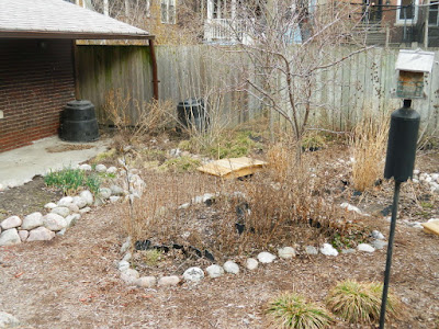 Toronto Riverdale spring garden cleanup before by Paul Jung Gardening Services