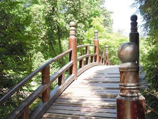 garbaty, łukowaty most w ogrodzie japońskim