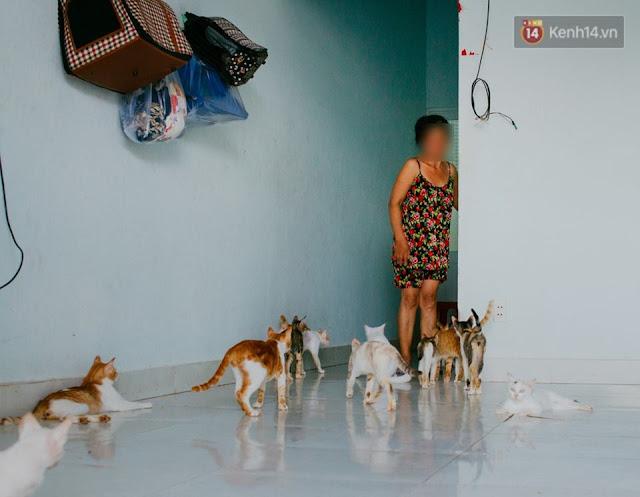 Bà Chi 20 năm cưu mang mèo hoang ở Sài Gòn.