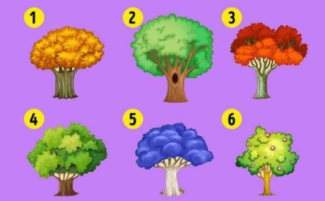 إختر شجرة من الصورة ... واعلم ماذا يخبئ لك العام 2018 في هذا الاختبار