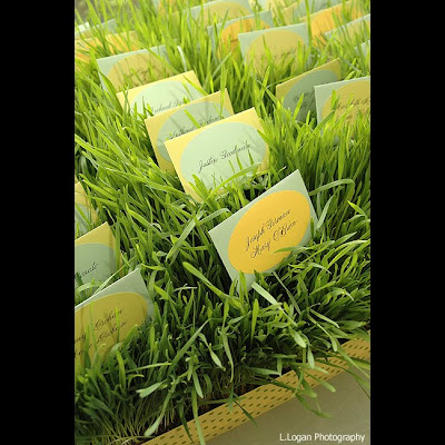 wheat grass place cards for weddings