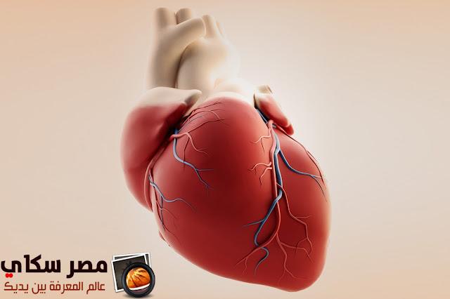 أمراض القلب وعلاقتة بالاعضاء الاخرى فى جسم الانسان Heart disease