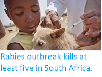 http://sciencythoughts.blogspot.com/2018/03/rabies-outbreak-kills-at-least-five-in.html