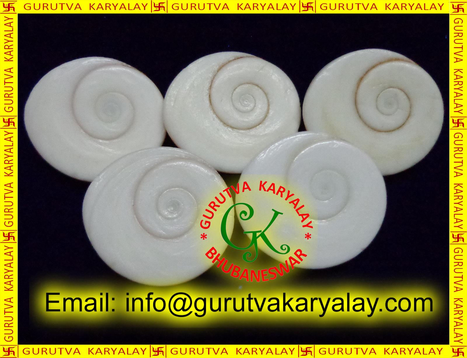 Shri Gems Mantra Siddha 11pcs Very Rare Gomati Chakra Big