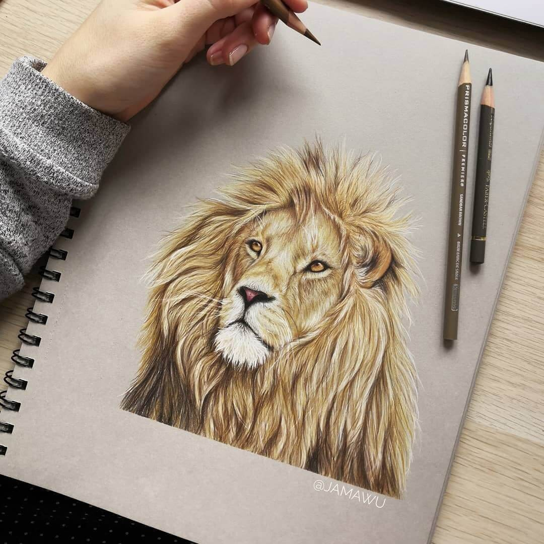 01-Lion-J-Wuiz-Animals-and-Food-Art-Pencil-Drawings-www-designstack-co