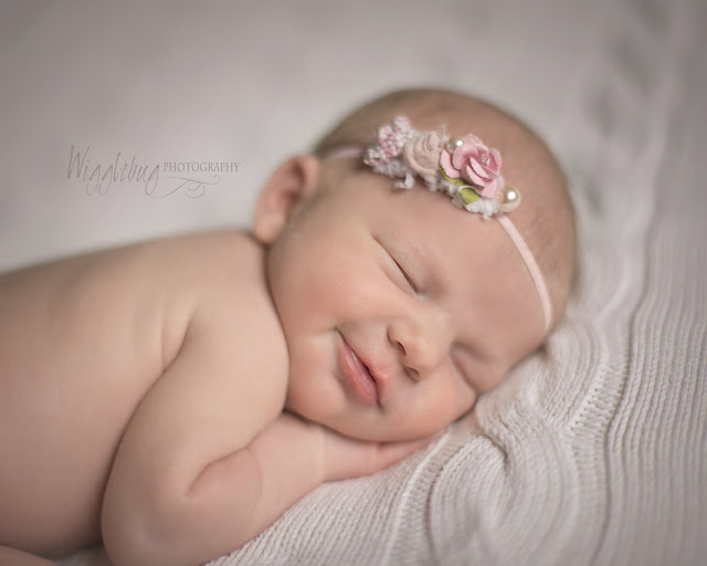 Newborn Baby Girl from Rockford, IL visits the DeKalb, IL photography studio at Wigglebug Photography