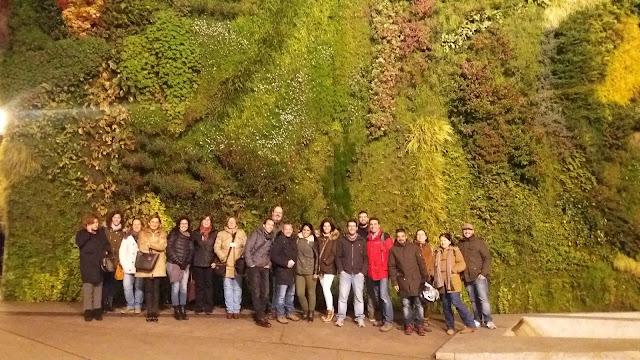 Curso jardines verticales y cubiertas vegetales Madrid