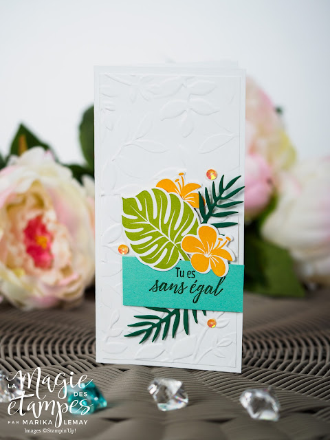 5 cartes sur un même sketch avec le lot Chic tropical Stampin' Up!