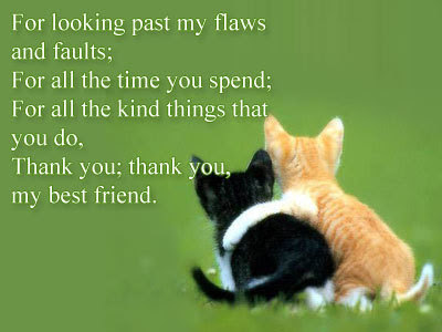 cat quotes for looking past my flaws and faults: for all the time spend;