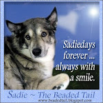 Sadie - Forever in our hearts