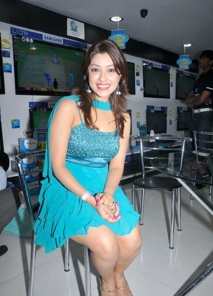 South Indian Actress Hot Photos Hot Videos South Indian