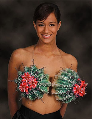 http://3.bp.blogspot.com/-R_S1sfPfB5A/UBV5vkY-tjI/AAAAAAAAYbY/PW2jk5-ok7I/s1600/the_most_unconventional_bras_ever_640_17.jpg