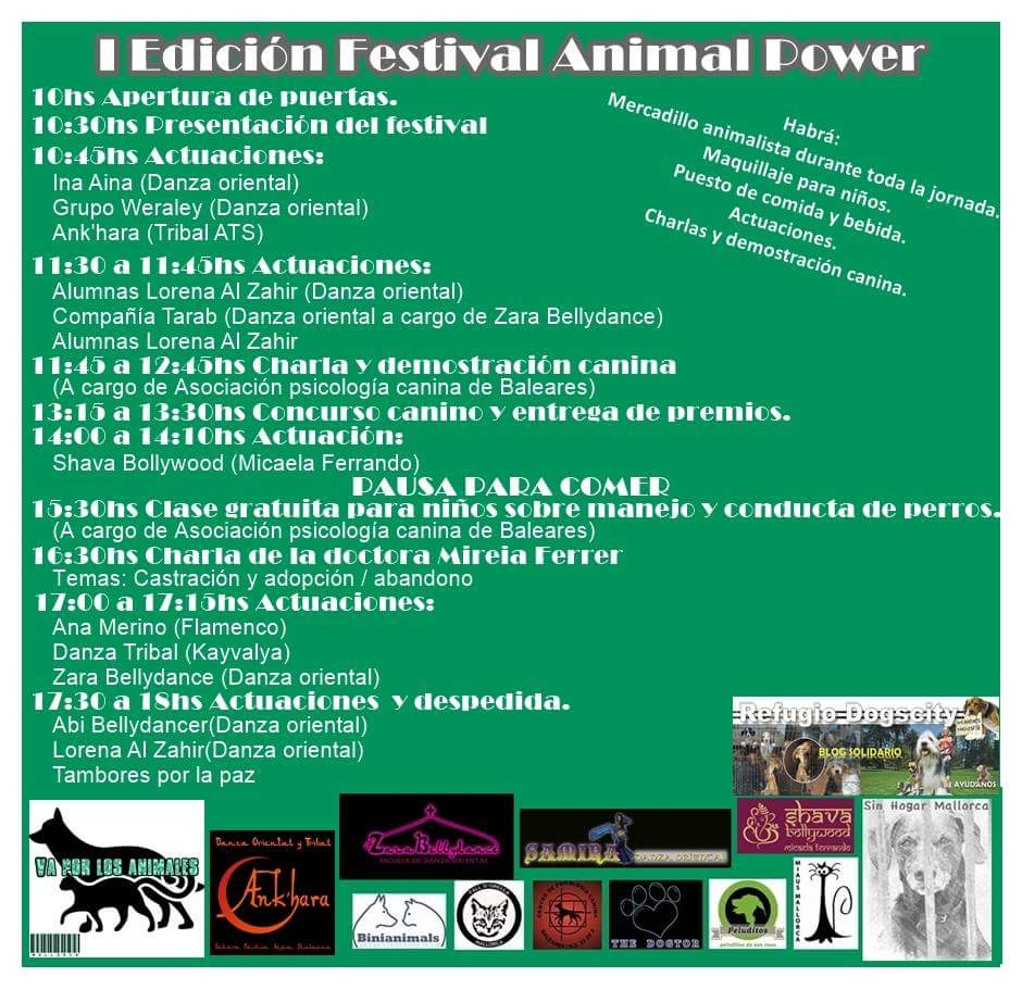 Sin Hogar Mallorca Animal Power Festival Benefico A Favor De Sin Hogar Mallorca