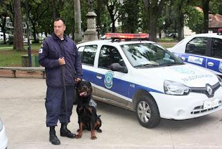 Cães da Guarda Civil de Petrópolis (RJ) fazem apresentação na Praça da Liberdade