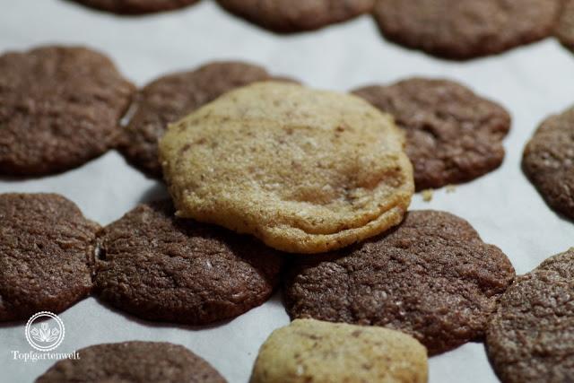Schokoladensterne Rezept nach Elisabeth Ruckser funktioniert nicht - Foodblog Topfgartenwelt