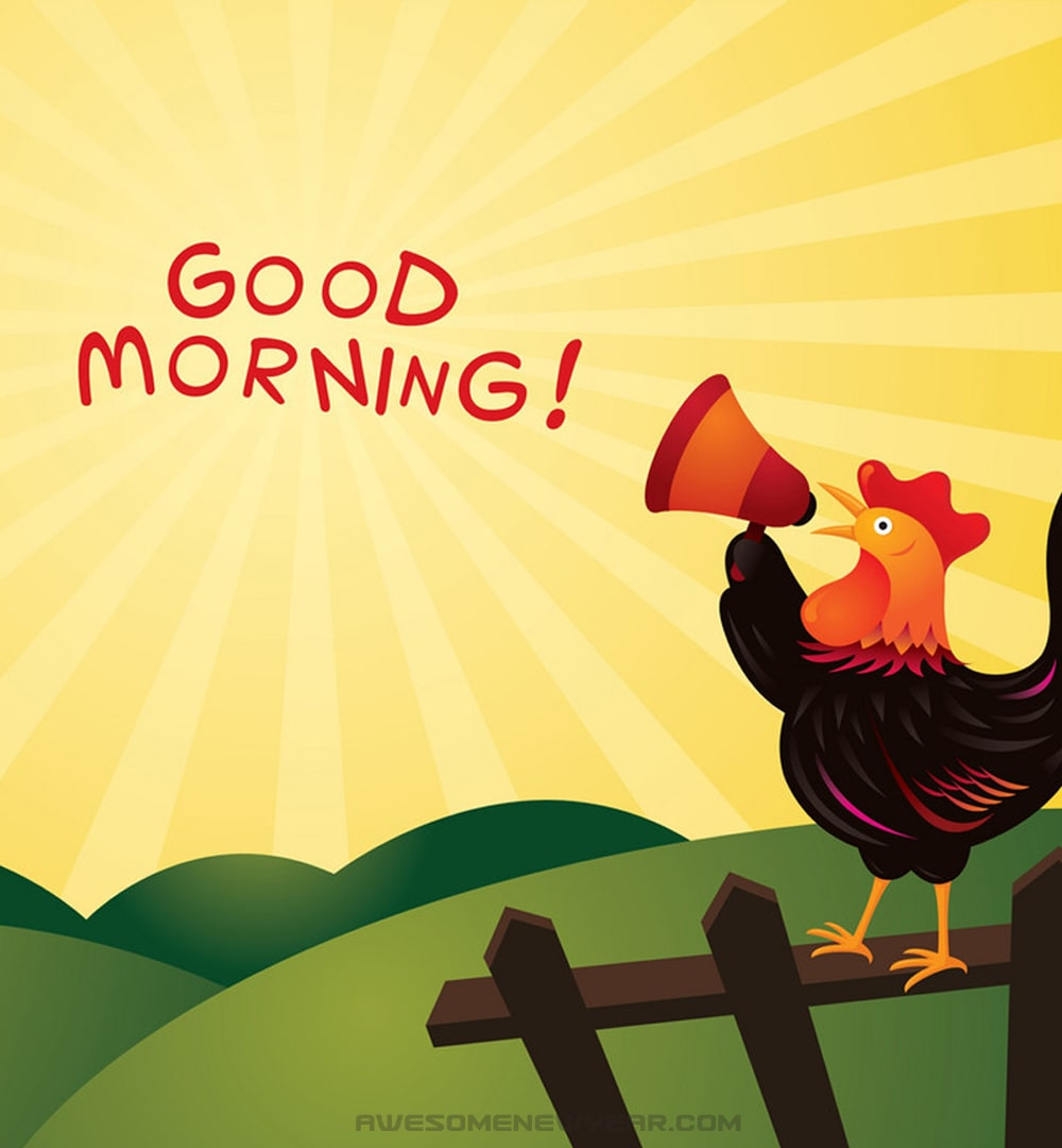 cute good morning photos hd free download