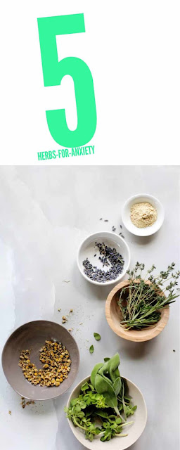 5 Best Herbs That Helps Soothe Anxiety Naturally