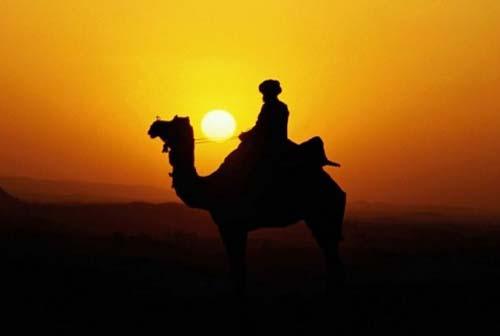 Cerita Islami: Orang Ahli Ibadah (Abid) Mimpi Bertemu Rasulullah
