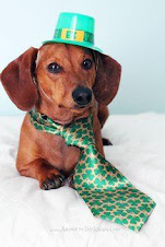 Happy St. Patrick's Day, Doxie Lovers