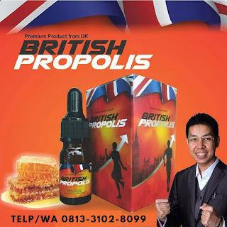 khasiat minum propolis ,khasiat minum madu propolis ,manfaat minum propolis bagi tubuh ,manfaat minum propolis setiap hari manfaat minum madu propolis