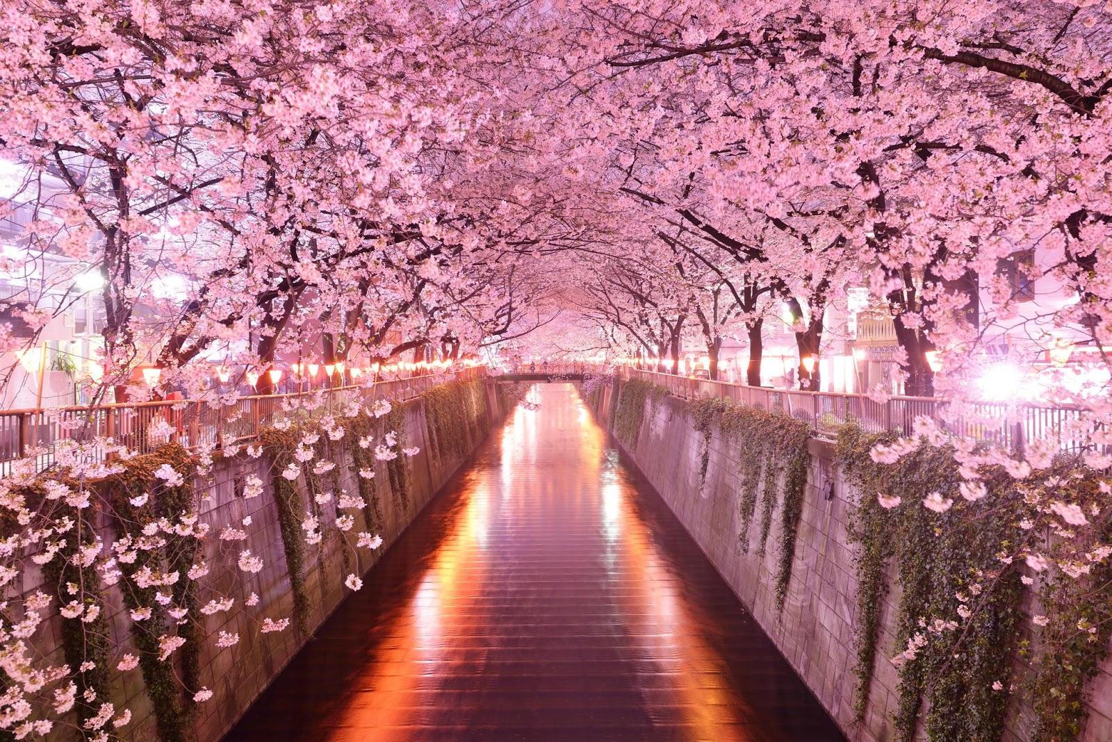 Japanese Desktop Wallpaper