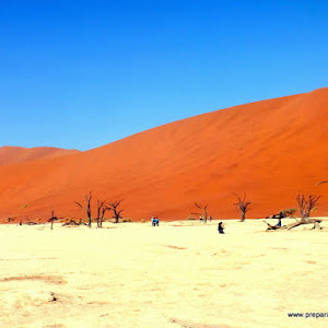 Consejos para viajar a Namibia por libre