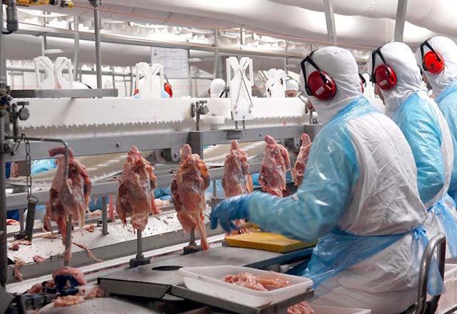 México também suspende importação de carne de frango do Brasil