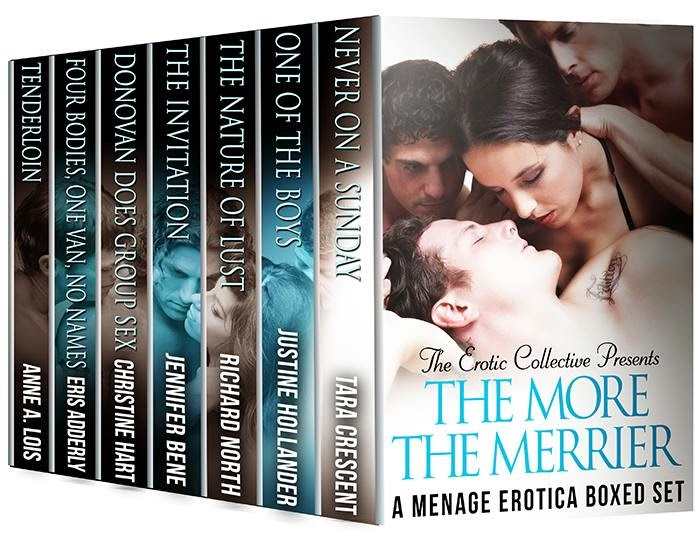 The More The Merrier ebook cover