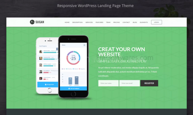 WordPress Software theme