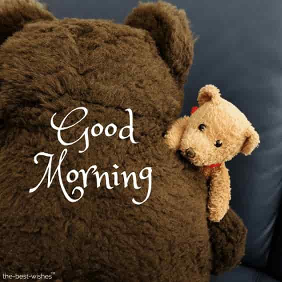 good morning friends with teddy bear photo