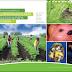 Libros de agronomia pdf gratis: Guia fotografica de las principales plagas del cultivo de papa en Ecuador