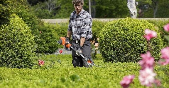 Servicios de jardiner a y decoraci n exterior for Servicio de jardineria