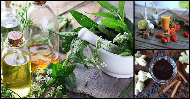 Healing Tonics That Can Help Shorten The Duration Of Sickness