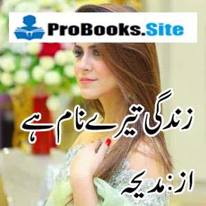 Zindagi Tere Naam Hai Complete Novel By Madeha
