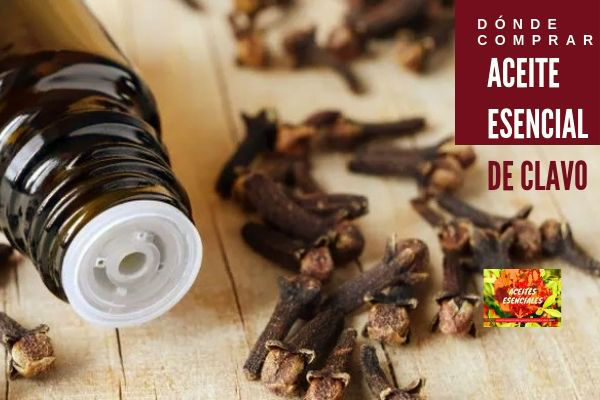 Aquí es donde puedes comprar aceite esencial de calvo