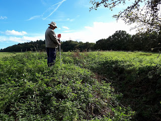 Topographic Survey, Community Archaeology at Clipstone Peel in Sherwood Forest