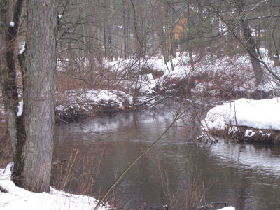 Little South Branch of the Pere Marquette River