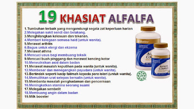 Image result for alfalfa shaklee