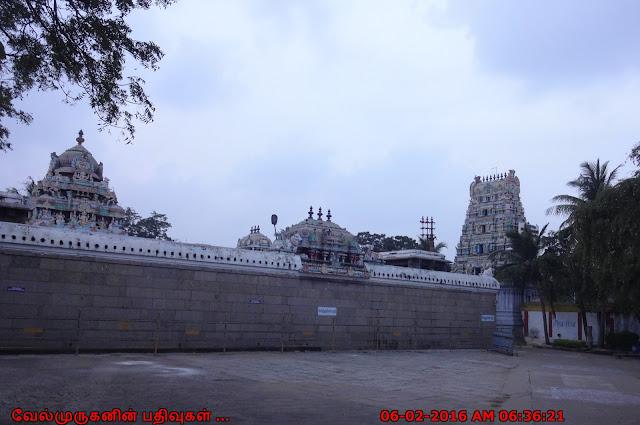 Chennai Thiruvanmiyur Shiva Temple