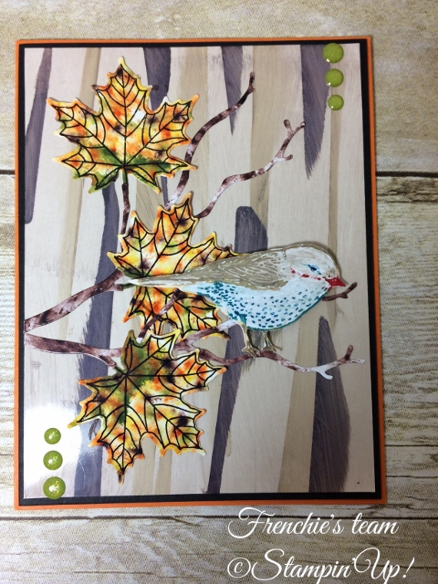 Glossy paper, Best Bird, Colorful Season, Stampin'Up!