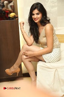 Actress Kamana Ranawat  Pictures in Short Dress at Selfie Raja Movie Success Meet  0255.JPG