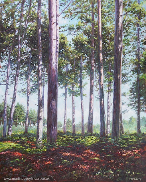 Martin Davey new forest Pine trees painting