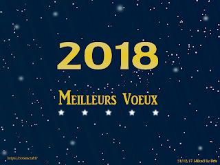 2018 meilleurs voeux de boismetal