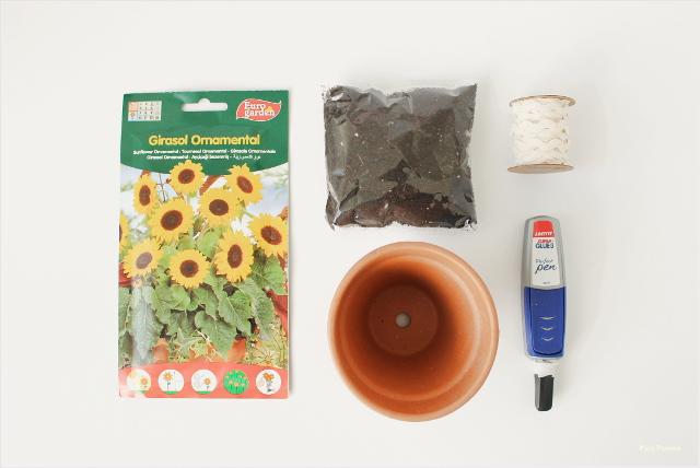 maceta-personalizada-diy-pintura-pipas-girasol-materiales